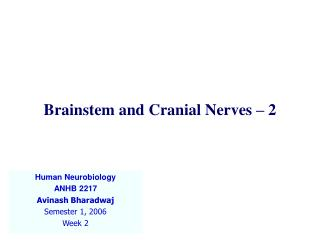 Brainstem and Cranial Nerves – 2