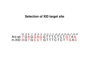 Selection of XID target site