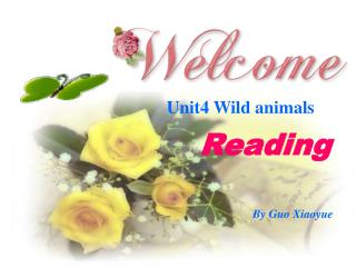 Unit4 Wild animals
