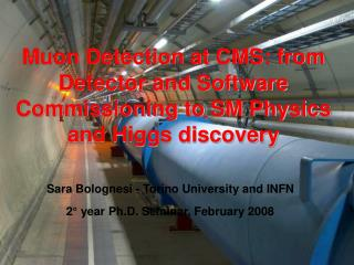 Muon Detection at CMS: from Detector and Software Commissioning to SM Physics and Higgs discovery