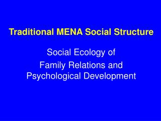 Traditional MENA Social Structure
