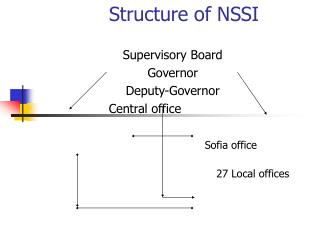 Structure of NSSI