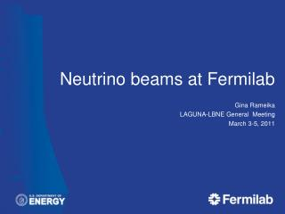 Neutrino beams at  Fermilab