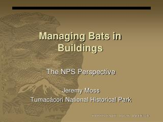 Managing Bats in Buildings