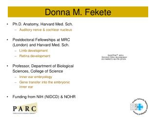 Donna M. Fekete