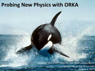 Probing New Physics with ORKA