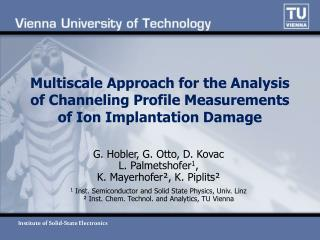 Multiscale Approach for the Analysis of Channeling Profile Measurements of Ion Implantation Damage