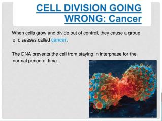 When cells grow and divide out of control, they cause a group of diseases called  cancer .