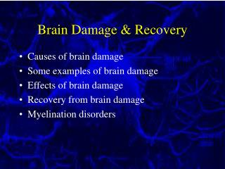 Brain Damage & Recovery