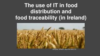 The use of IT in food distribution and  food traceability (in Ireland)