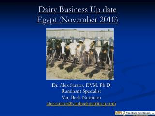 Dairy Business Up date Egypt (November 2010)