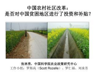 中国农村社区改革: 是否对中国贫困地区进行了投资和补贴?
