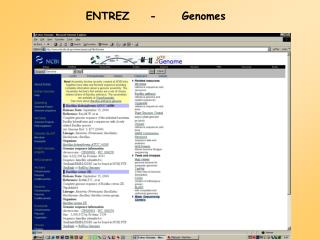ENTREZ	-	Genomes