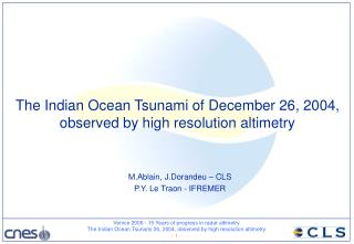 The Indian Ocean Tsunami of December 26, 2004,  observed by high resolution altimetry