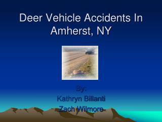 Deer Vehicle Accidents In  Amherst, NY