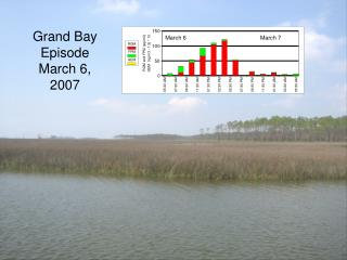 Grand Bay  Episode  March 6, 2007