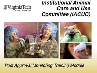Institutional Animal Care and Use Committee (IACUC )