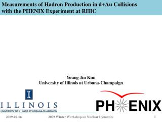 Measurements of Hadron Production in d+Au Collisions with the PHENIX Experiment at RHIC