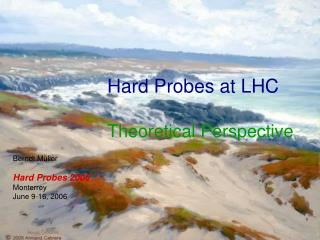 Hard Probes at LHC Theoretical Perspective