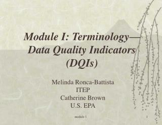Module I: Terminology— Data Quality Indicators (DQIs)