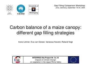 Carbon balance of a maize canopy: different gap filling strategies