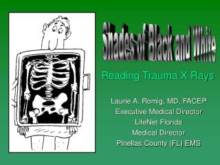 Laurie A. Romig, MD, FACEP Executive Medical Director LifeNet Florida Medical Director Pinellas County (FL) EMS