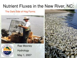 Nutrient Fluxes in the New River, NC: