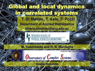 Global and local dynamics in correlated systems