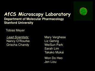 AfCS Microscopy Laboratory Department of Molecular Pharmacology Stanford University Tobias Meyer