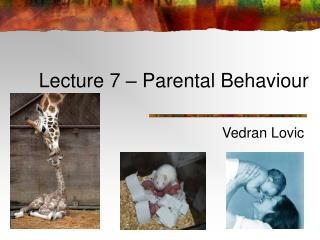 Lecture 7 – Parental Behaviour
