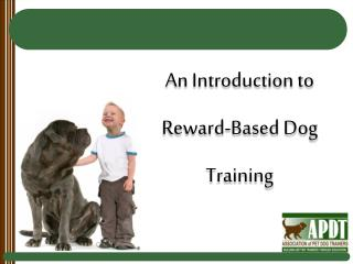 An Introduction to Reward-Based Dog Training