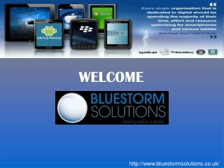 Blue Storm Solutions LTD