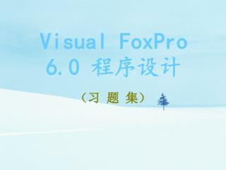 Visual FoxPro 6.0  程序设计