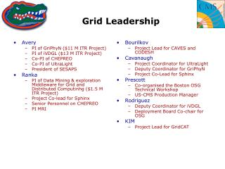 Grid Leadership
