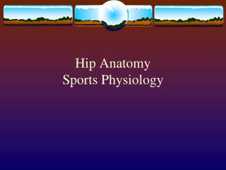 Hip Anatomy Sports Physiology