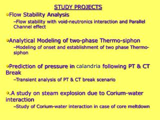 STUDY PROJECTS Flow Stability Analysis
