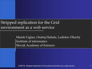 Stripped replication for the Grid environment as a web service