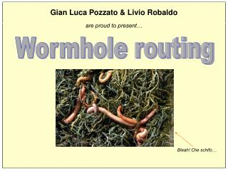 Wormhole routing