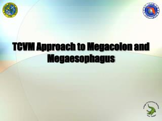 TCVM Approach to Megacolon and Megaesophagus