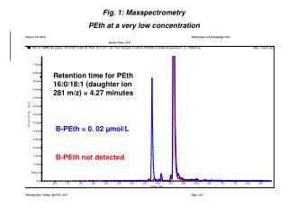 B-PEth = 0. 02 µmol/L