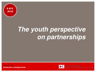The youth perspective on partnerships