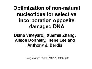 Optimization of non-natural nucleotides for selective incorporation opposite damaged DNA