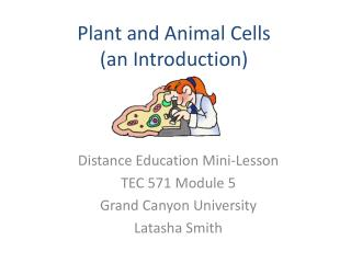 Plant and Animal Cells  (an Introduction)
