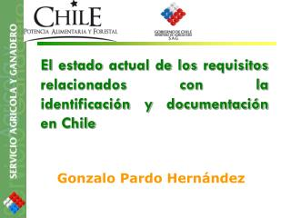 El estado actual de los requisitos relacionados con la identificación y documentación en Chile