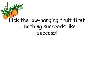 Pick the low-hanging fruit first -- nothing succeeds like success!