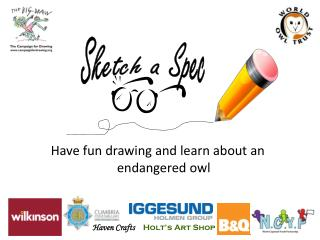 Have fun drawing and learn about an endangered owl