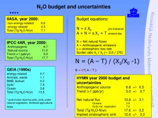 N 2 O budget and uncertainties