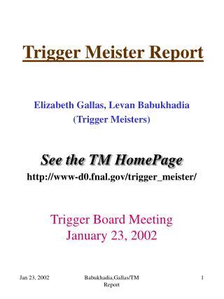 Trigger Meister Report