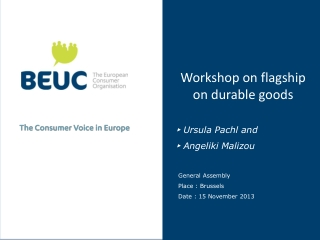 Workshop on flagship on durable goods ▸ Ursula Pachl and ▸ Angeliki Malizou