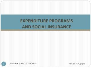 EXPENDITURE PROGRAMS  AND SOCIAL INSURANCE